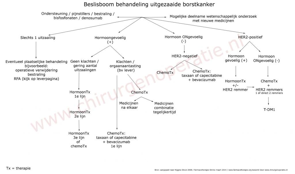 beslisboom_uitzaaiingen_ borstkanker_professional_w