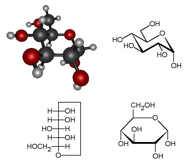 glucose_molecuul